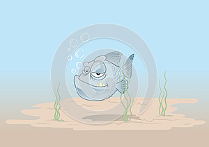 Alone Fish Stock Photography - Image: 25506652