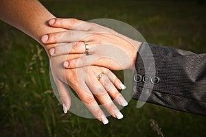Wedding Rings Stock Image - Image: 25548721