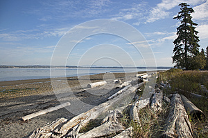 Tide Out Royalty Free Stock Photo - Image: 25563685