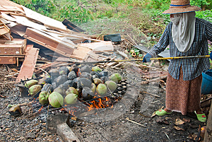 Burnt Coconuts Royalty Free Stock Photography - Image: 25590457
