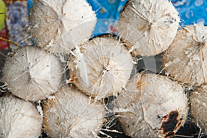 Burnt Coconuts Stock Photos - Image: 25590513
