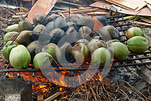 Burnt Coconuts Stock Photos - Image: 25590573