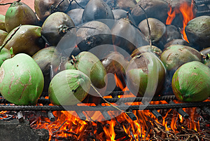 Burnt Coconuts Royalty Free Stock Photos - Image: 25590608