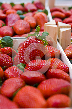 Strawberries In Boxes Stock Image - Image: 25594551