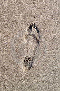 Foot Print Royalty Free Stock Image - Image: 2562586