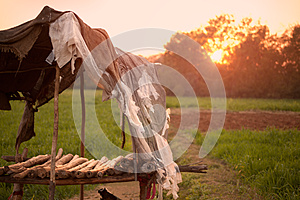 Vecchia Capanna Nociva Immagine Stock Libera da Diritti - Immagine: 25604466