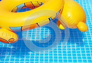 Colorful Toy Swimming Tire At The Pool Stock Photo - Image: 25624290