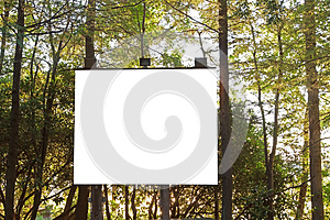 Projection Board In The Woods Stock Images - Image: 25690944