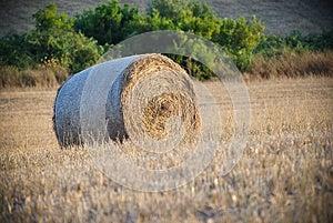 сено Bale круглое Стоковые Изображения - изображение: 25723154