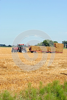 Tractors Load Bales Of Hay Royalty Free Stock Image - Image: 25724586