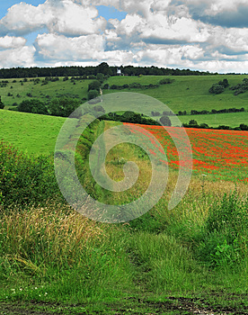 An English Rural Landscape In The Chiltern Hills Royalty Free Stock Photography - Image: 25744807