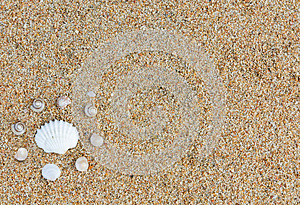 Sea Shells Stock Photo - Image: 25748290