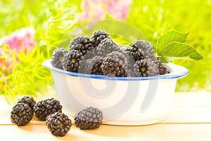 Fresh And Tasty Blackberries Stock Photos - Image: 25780683