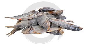 Dried Salty Fishes Stock Photos - Image: 25804983
