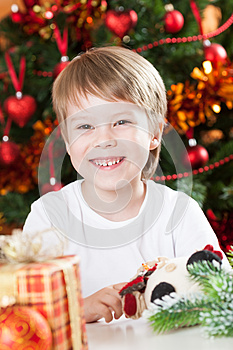 Happy Smiling Kid In Christmas Royalty Free Stock Photos - Image: 25860968