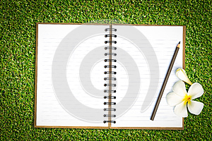 Notebook In Green Grass Royalty Free Stock Photography - Image: 25888637