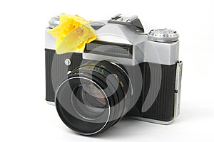 Old Film Camera On White With Yellow Narcissus Stock Photography - Image: 25892102