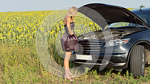 Bemused Woman Looking At Car Engine Stock Photography - Image: 25899762