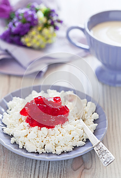 Homemade Cottage Cheese Stock Photo - Image: 25927500