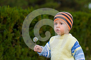 The Boy With A Dandelion Royalty Free Stock Photos - Image: 25927818