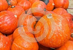 Pumpkins For Sale Stock Images - Image: 25939674
