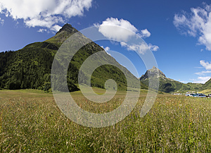 Green Summer Alps Meadow Stock Photography - Image: 25953022