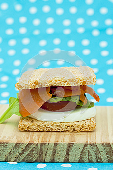 Cracker Sandwich With Smoked Salmon Royalty Free Stock Photos - Image: 25984968
