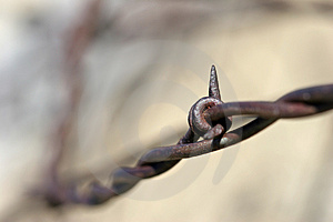 Barbed Wire Abstract Stock Images
