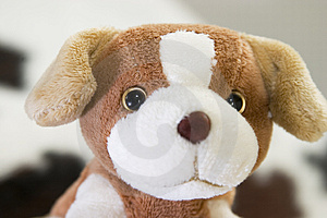 Puppy Toy Free Stock Photography