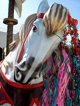 Carrousel Horse Free Stock Image