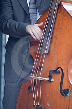 Musician Royalty Free Stock Image - Image: 2601906