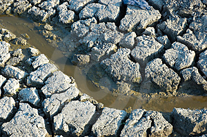 Muddy Spring On Dried Dirt Stock Photography - Image: 2606852