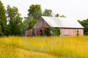 Old Tobacco Barn In Hayfield Royalty Free Stock Photography - Image: 2608247