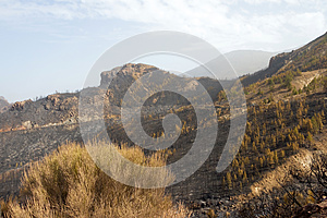 El Teide 9 Stock Photography - Image: 26002462