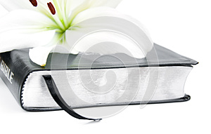 Easter Lily And Bible Stock Image - Image: 26016031