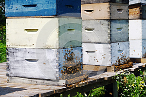 Beehives Royalty Free Stock Photos - Image: 26055568