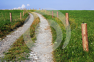 The Path Royalty Free Stock Photo - Image: 26092915