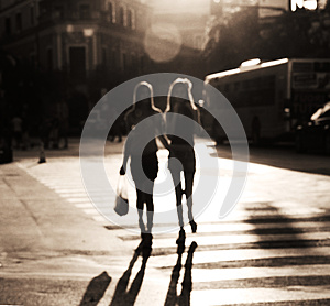 Crossing The Street Stock Images - Image: 26094644