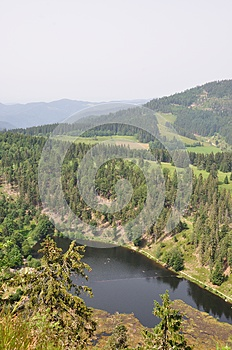 Black Forest Stock Photo - Image: 26183290