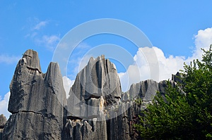 Stone Forest Stock Photos - Image: 26213943