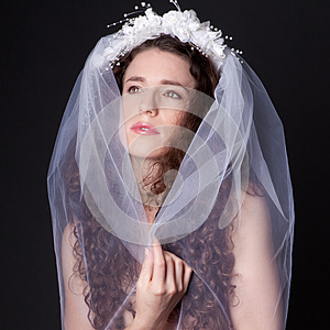 Beautiful Woman In Bridal Veil Royalty Free Stock Photo - Image: 26227285