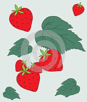 Strawberry Fruit & Leaves Illustration Stock Photos - Image: 26259083