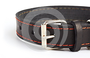 Dogs Collar Macro Royalty Free Stock Image - Image: 26285336