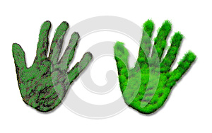 Abstract Hand Of Grass Royalty Free Stock Photos - Image: 26305408