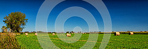 Hay Field Royalty Free Stock Photos - Image: 26377938