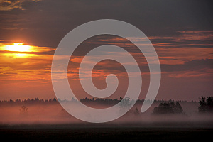 Dawn. Meadow. Fog. Royalty Free Stock Images - Image: 26479329