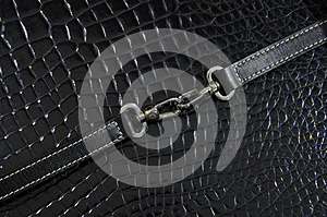 Buckle And Belt Royalty Free Stock Image - Image: 26541616