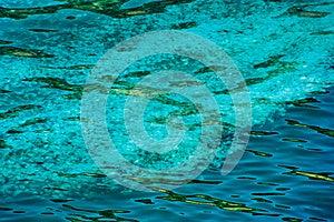 Jellyfish Background Stock Image - Image: 26569951