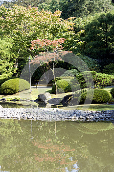 Picturesque Japanese Garden With Pond Stock Photography - Image: 26613902