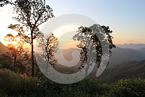 The First Light Stock Images - Image: 26620044